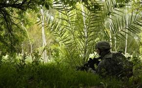 Картинка лес, трава, автомат, Солдат, экипировка