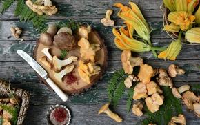 Картинка грибы, лисички, боровики