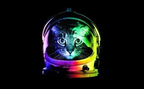 Картинка Минимализм, Кот, Шлем, Cat, Minimalism, Hat, Астрокот, Astrokot