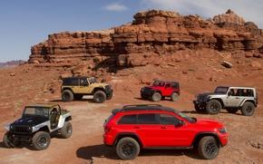 Картинка авто, джип, cars, внедорожники, suv, модельный ряд, Jeep, mix, Grand Cherokee Trailhawk II, Wrangler Stitch, …