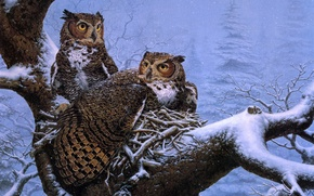 Картинка зима, снег, дерево, сова, ель, гнездо, живопись, совы, Lee Kromschroeder, February Nest