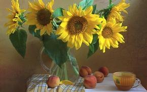 Картинка цветы, подсолнух, чашка, кувшин, натюрморт, персики