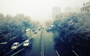Обои ветер, машины, токио, город