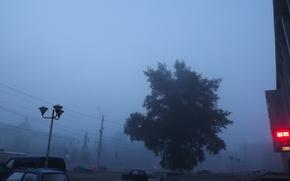 Картинка город, туман, утро, площадь, тополь, Калуга