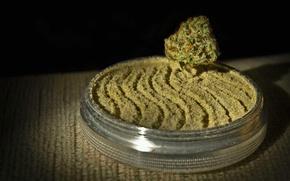 Картинка трава, растение, шишка, пепельница, cannabis, порошок, weed, mary jane