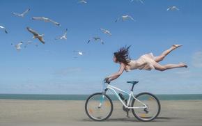Картинка девушка, велосипед, берег, чайки, скорость