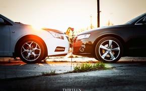 Картинка машина, авто, цветок, Audi, роза, Chevrolet, auto, photographer, Cruze