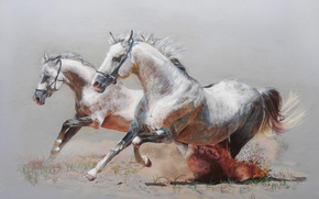 Картинка Рисунок, кони, лошади, пара, бег, пыль