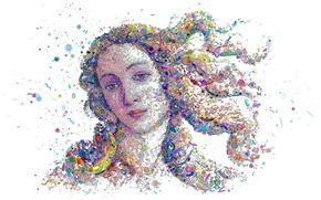 Обои лицо, бактерии, вирусы, Рождение Венеры, Botticelli's Venus