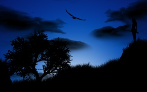 Картинка девушка, ночь, дерево, птица, орел, силуэт, ружье