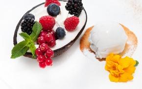 Картинка мороженое, десерт, сладкое, malina, yagdi, smorodina krasnaya, ejevika, kokosoviy