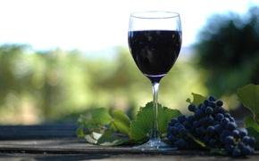 Обои разное, вино, бутилко, деревия, винаград