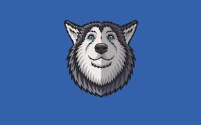 Картинка морда, собака, минимализм, хаски, husky