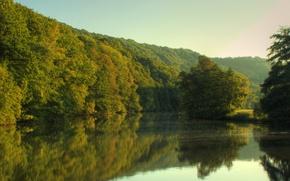 Обои деревья, река, лес