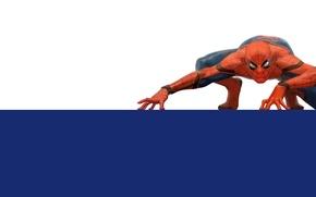 Картинка обои, краски, вектор, Spider-Man