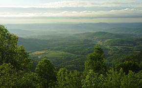 Картинка горы, поля, панорама, США, леса, Blue Ridge Parkway