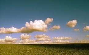 Картинка поле, облака, цвет