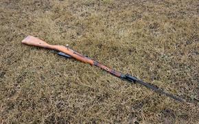 Обои Мосина, M44, магазинная, 1944, винтовка