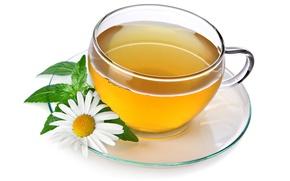 Картинка цветок, чай, ромашка, чашка, напиток, блюдце