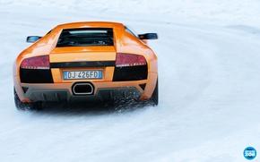 Картинка Lamborghini, ламборгини, Murcielago, вид сзади, снег, дорога, зима, суперкар, top gear, высшая передача, advent calendar, ...