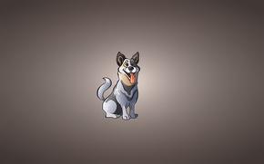 Картинка язык, собака, пес, сидит, счастливая, смешной взгляд