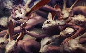 Обои драка, кролики, мутанты, ryohei hase