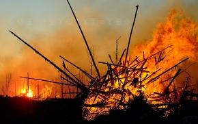 Картинка огонь, палки, Пожар, костер