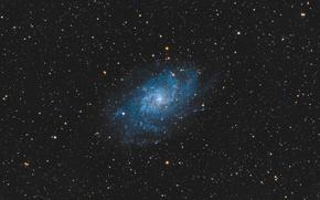 Обои галактика, спиральная, в созвездии, Треугольника