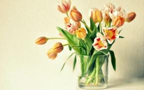 Картинка цветы, тюльпаны, ваза, оранжевые