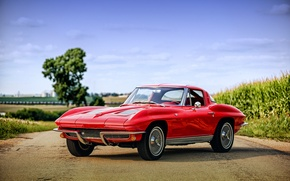 Обои 1963, chevrolet, corvette, sting ray c2, шевроле