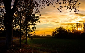 Картинка поле, осень, деревья, закат, вечер