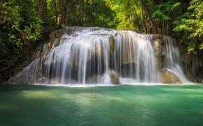 Картинка зелень, лес, вода, деревья, водопад
