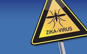 Картинка mosquito, alert, disease, zika