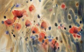 Картинка цветы, маки, картина