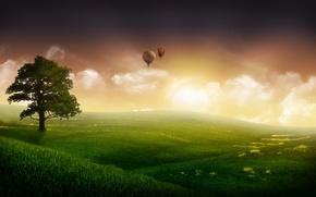 Картинка небо, трава, туман, фантастика, дерево, шары