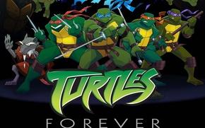 Картинка Черепашки-ниндзя, Рафаэль, Raphael, Leonardo, Donatello, Донателло, Леонардо, Микеланджелло, Teenage Mutant Ninja Turtles Out of the ...