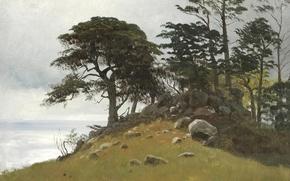 Картинка деревья, пейзаж, камни, картина, Альберт Бирштадт, Cypress Point. Monterey