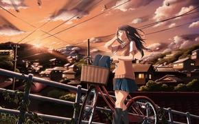 Картинка небо, девушка, облака, закат, птицы, велосипед, город, дома, аниме, арт, школьница, inoki