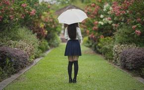 Обои девушка, парк, зонтик, волосы, юбка, ножки
