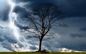 Картинка гроза, тучи, природа, дерево, молния