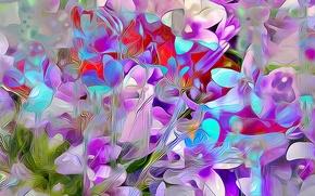 Обои цветы, лепестки, растение, природа