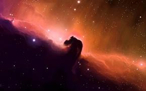 Картинка космос, звезды, туманность, арт, конская голова