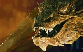 Обои дракон, арт, Lord of the Rings, Хоббит: Пустошь Смауга, The Hobbit: The Desolation of Smaug, ...