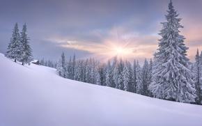 Картинка зима, солнце, снег, склон, домик, ёлки
