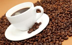 Обои кофе, зерна, чашка, белая, блюдце, coffee