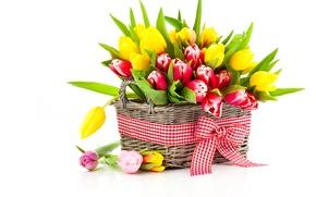 Обои тюльпаны, много, корзинка, бантик