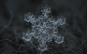 Обои зима, макро, снег, волокна, снежинка