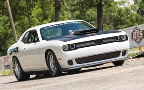 Картинка Dodge, Challenger, Mopar, 2015, Drag Pak