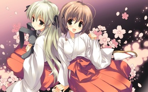 Обои цветы, лепестки, кролик, art, подруги, kasugano sora, yosuga no sora, жрицы, koharu sakura, akira amatsume