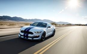 Картинка движение, пустыня, скорость, трасса, Mustang, Shelby, GT350